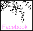 Gina Uhlmann Photography Faceboook
